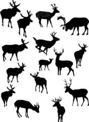 fifteen deer silhouettes