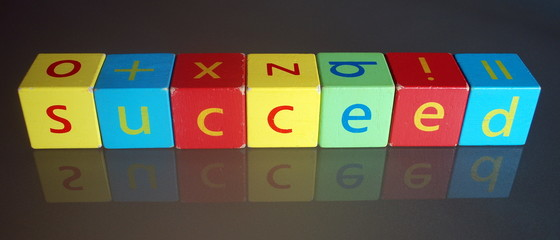 """Succeed"" (wooden blocks)"