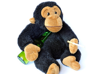 Funny scene: fluffy monkey with beer and cigarette