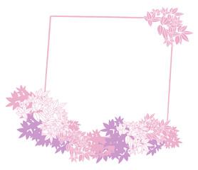 cadre feuillages blanc et rose sur fond blanc