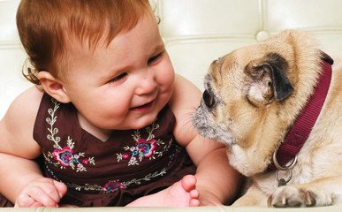 Baby playing with pet pug