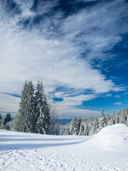 Winter landscape,Serbia