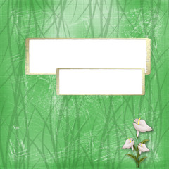 Two gold frame on the green abstract background with calla