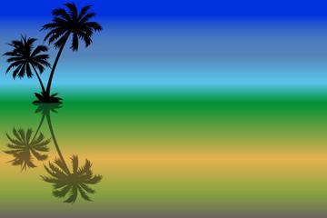 palmiers et couleurs