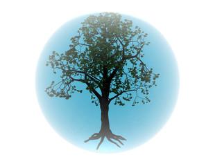 écologie 10