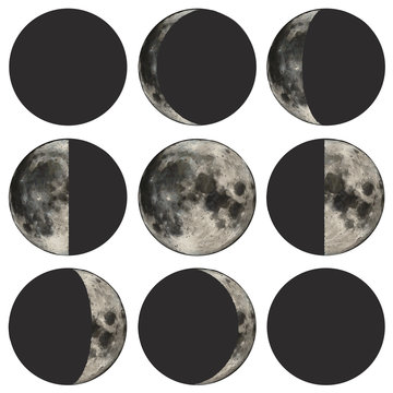 Phases of the moon scientific vector illustration