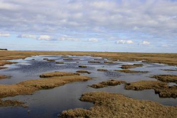 Sumpf von Blavand - Everglade of Blavand