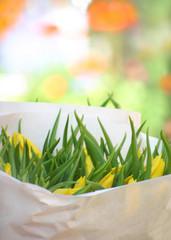 eine Tüte Frühling, bitte...