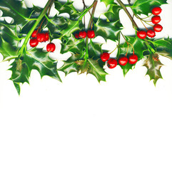 Christmas border, holly with red berrys, isolated