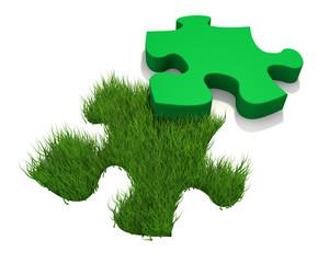Puzzle e erba