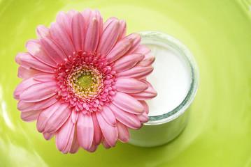 photos illustrations et vid os de pot de yaourt. Black Bedroom Furniture Sets. Home Design Ideas