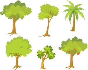 various trees and plants