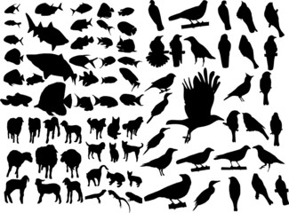 Set of animal clip art