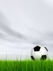 3d black and white soccer ball on green grass over a grey sky