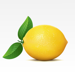 Lemon on a white background