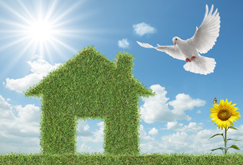 Wall Mural - dove and green grass house