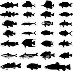 Sea animals fish silhouettes set
