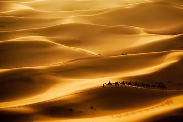 Poster Kameel Camel Caravan