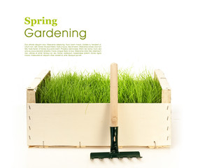 Spring gardening - grass and garden tools on white