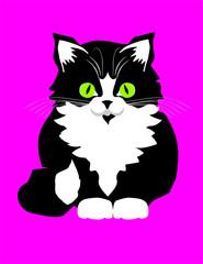 Printed kitchen splashbacks Cats kat_001