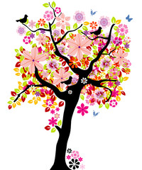 Printed roller blinds Birds in cages Blooming tree