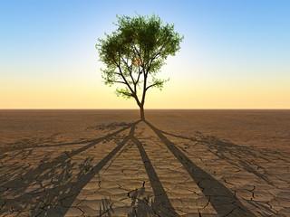 le dernier arbre