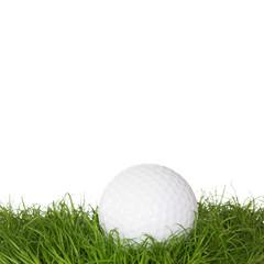 A golf ball in the grass