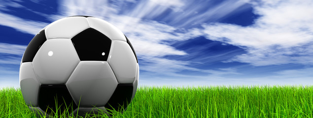3D black soccer ball,green grass and a blue sky with clouds