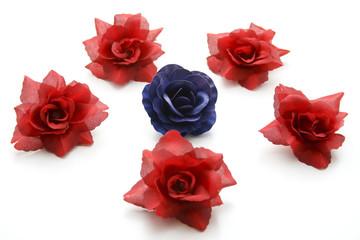 Blaue und rote Rosen