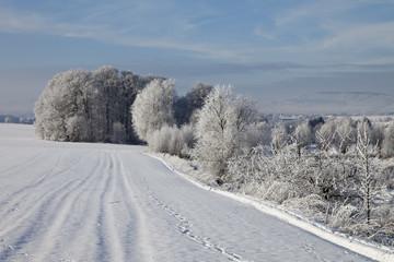 Fairy tale scenery