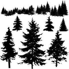 Pine Tree Silhouettes