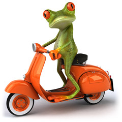 Grenouille en scooter