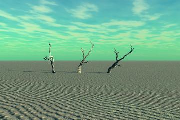 Dead Trees and Desert