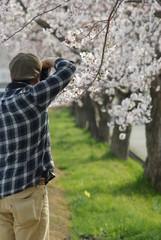 カメラマンの春