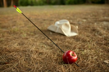 William tell metaphor with red apple and arrow