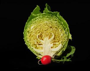 Cabbage & radish