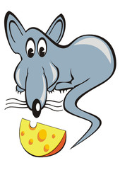 funny rat and a piece of cheese
