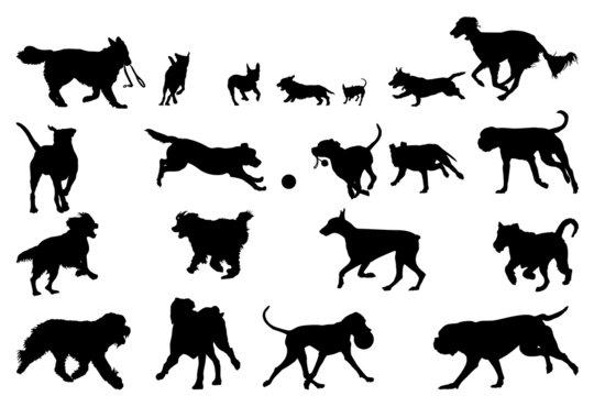 dog  running silhouettes, design elements