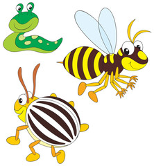 Wasp, potato beetle and slug