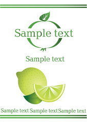 vectorial label on lemon drink