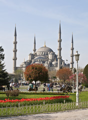 Istanbul. Blue mosque.