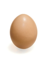 Brown egg vertical