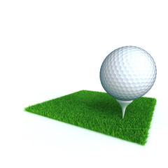 golf ball on a lawn from a green bright grass