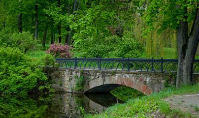 The bridge in Alexandria park