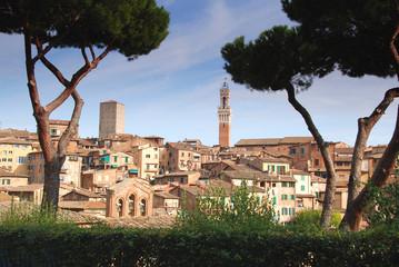 Siena, Blick auf die Altstadt mit Rathausturm