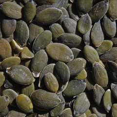 Graines de Courge - Pumpkin Seeds