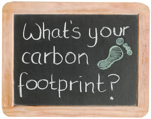 """What's your carbon footprint?"" on blackboard"