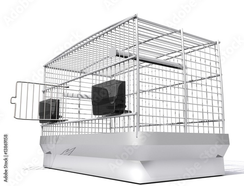 cage d 39 oiseau stock photo and royalty free images on. Black Bedroom Furniture Sets. Home Design Ideas
