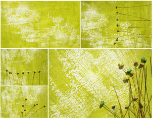 Dried flowers and abstract background collage