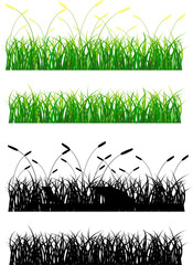 Grass green and silhouette